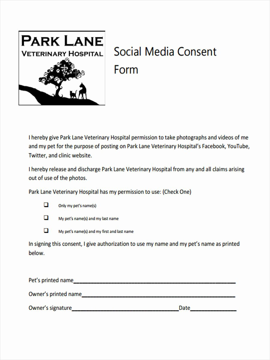 Media Release form Template Fresh 8 Media Consent form Samples Free Sample Example