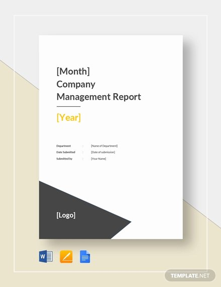 Monthly Report Template for Manager Awesome 40 Monthly Management Report Templates Pdf Google Docs