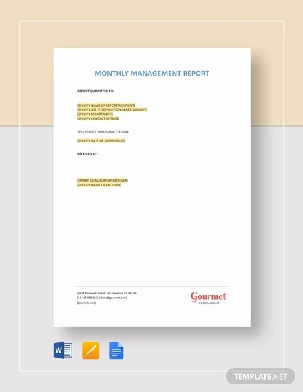 Monthly Report Template for Manager Luxury 40 Monthly Management Report Templates Pdf Google Docs
