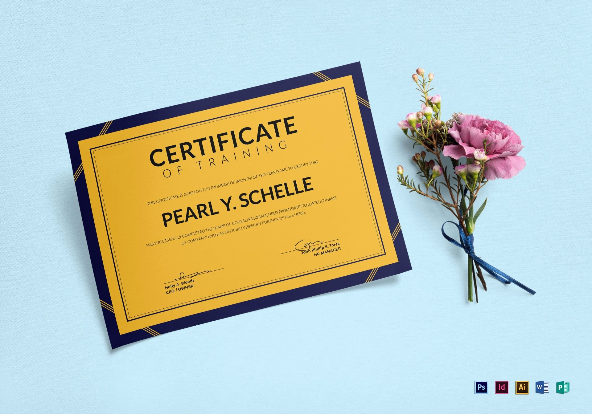 Ms Publisher Certificate Templates Fresh Elegant Training Certificate Design Template In Psd Word