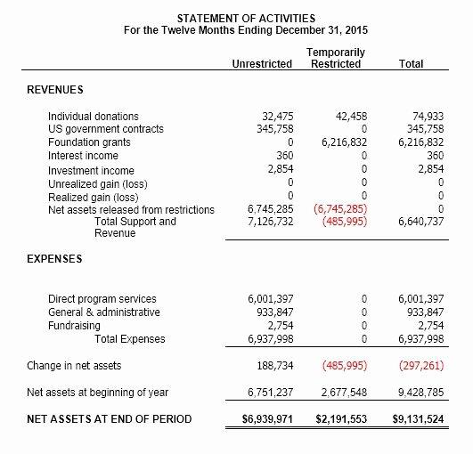 Non Profit Balance Sheet Template Beautiful Understanding Nonprofit Financial Statements