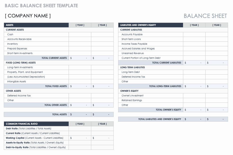 Non Profit Balance Sheet Template Elegant Free Balance Sheet Templates