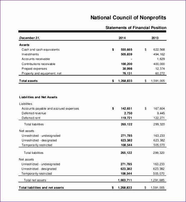 Non Profit Balance Sheet Template Fresh 10 Non Profit Balance Sheet Template Excel