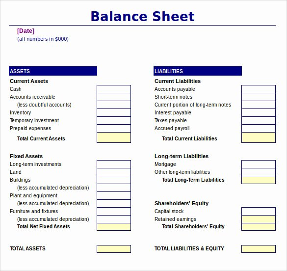 Non Profit Balance Sheet Template Lovely Sample Balance Sheet 20 Documents In Word Pdf Excel