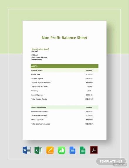 Non Profit Balance Sheet Template Luxury 6 Non Profit Sheet Templates Free Samples Examples