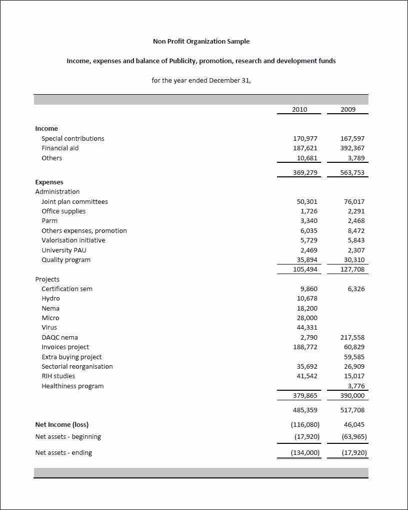 Non Profit Balance Sheet Template New Non Profit In E Statement Excel and Nonprofit Financial