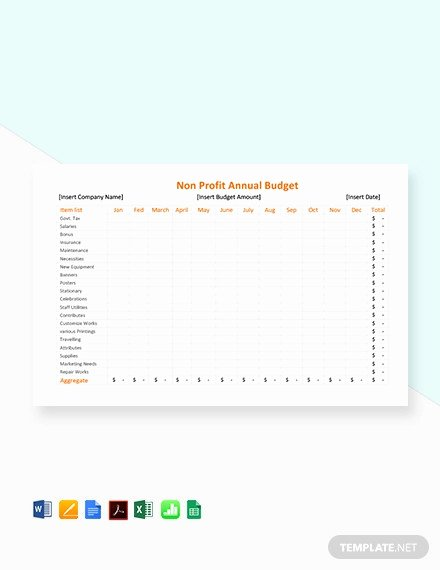 Non Profit Budget Template Beautiful 12 Non Profit Bud Templates Word Pdf Excel Google
