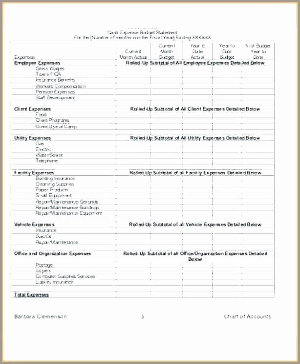 Non Profit Budget Template Excel Beautiful organizational Bud Template – Highendflavors