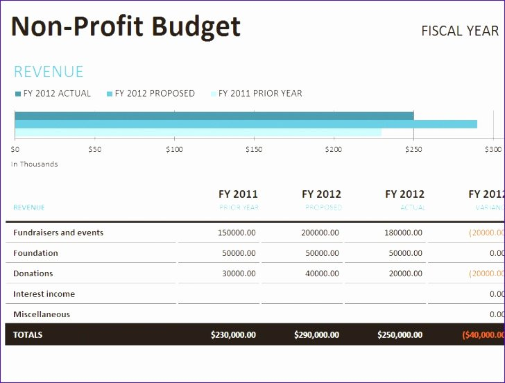 Non Profit Budget Template Excel Lovely 11 Nonprofit Bud Template Excel Exceltemplates