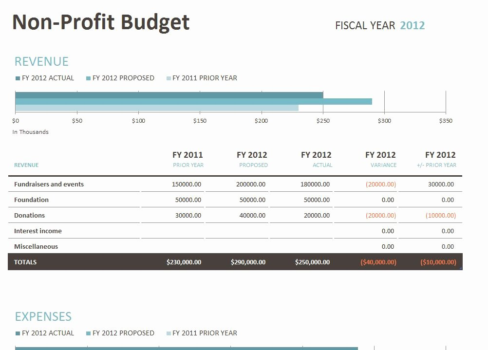 Non Profit Budget Template Unique Non Profit Bud Template