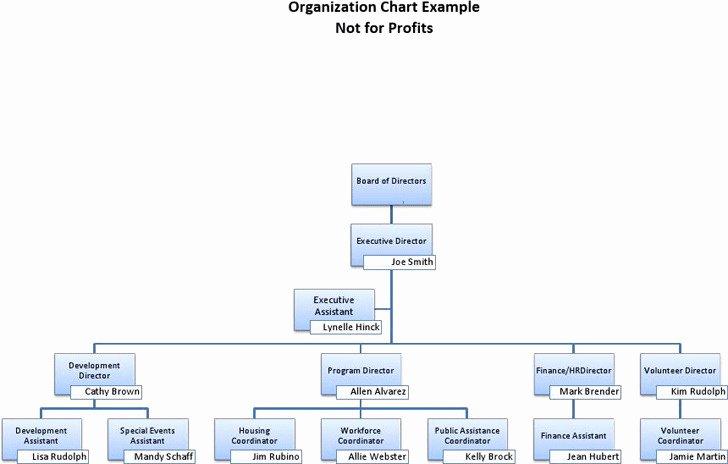 Non Profit organization Structure Template Beautiful 3 Non Profit organizational Chart Free Download