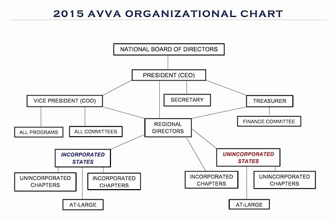 Non Profit organization Structure Template Best Of Image Result for Non Profit Board Structure Chart