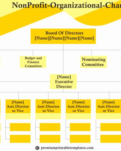 Non Profit organization Structure Template Best Of Non Profit organisation Chart Templates – A Sample