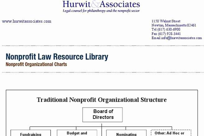 Non Profit organization Structure Template Fresh 3 Non Profit organizational Chart Free Download