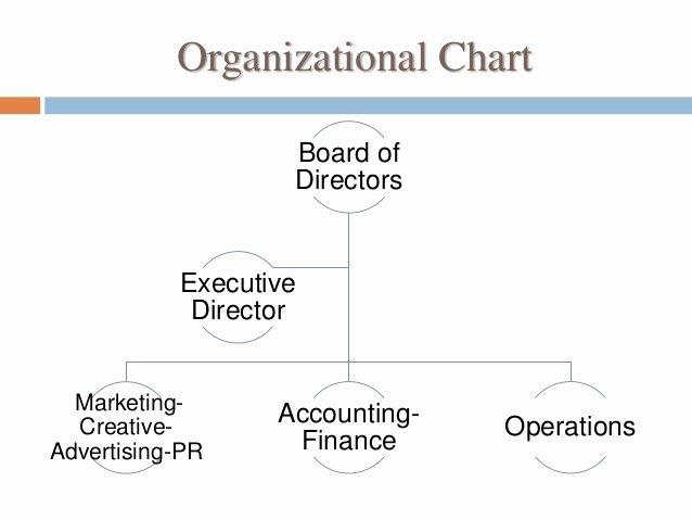 Non Profit organizational Chart Template Elegant Marketing Plan for Non Profit organization