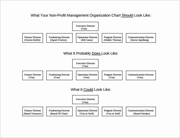 Non Profit organizational Chart Template Elegant Non Profit organizational Chart 7 Samples Examples format