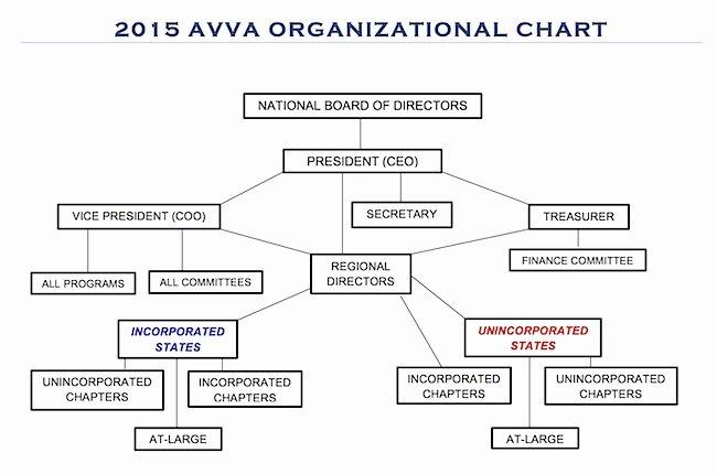 Non Profit organizational Chart Template Luxury Best S Of Board Structure Non Profit organization