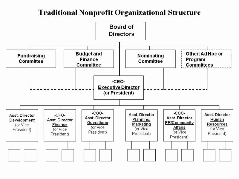 Non Profit organizational Chart Template Luxury Traditional Nonprofit organizational Structure