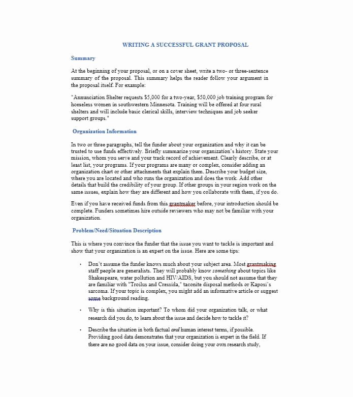 Non Profit Proposal Template Awesome 40 Grant Proposal Templates [nsf Non Profit Research