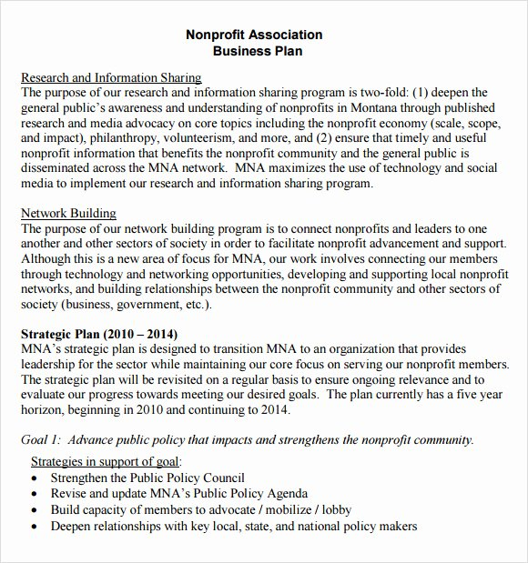 Non Profit Proposal Template Awesome Non Profit Business Plan Template 13 Download Documents