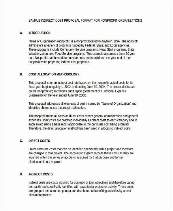 Non Profit Proposal Template Elegant Non Profit Business Plan Template