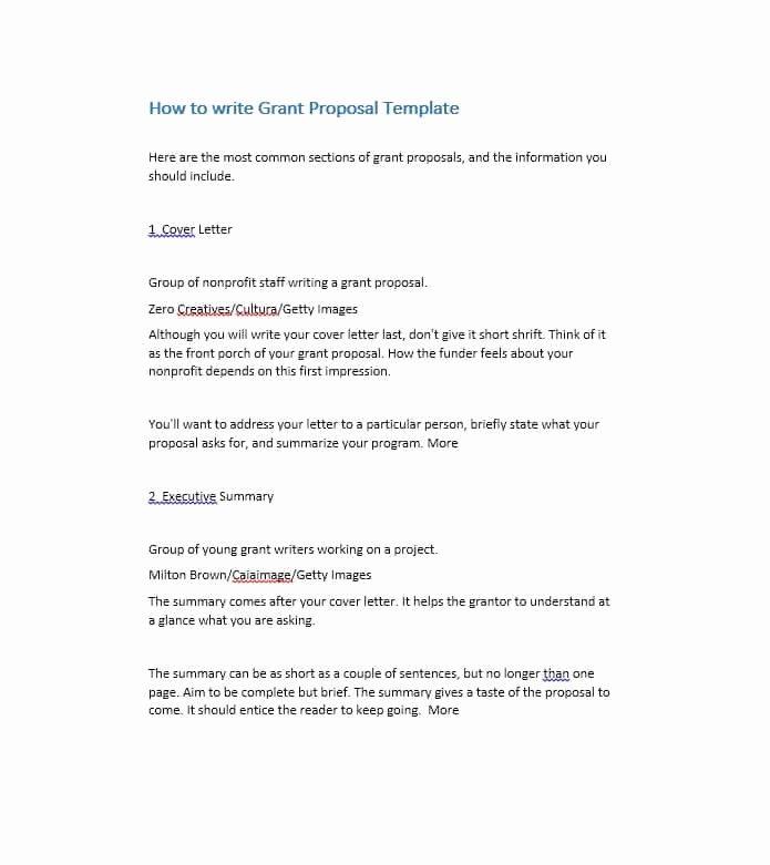 Non Profit Proposal Template Fresh 40 Grant Proposal Templates [nsf Non Profit Research