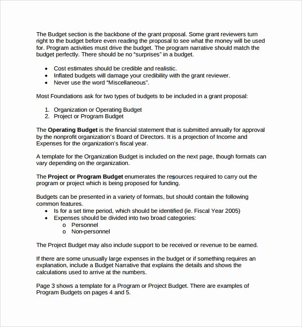 Non Profit Proposal Template Luxury Sample Non Profit Proposal Template 13 Free Documents