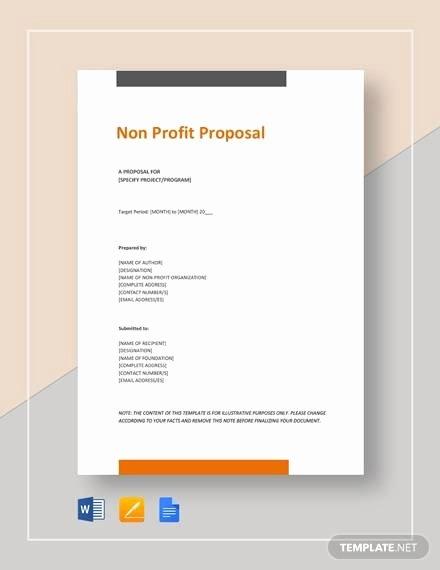 Non Profit Proposal Template New Sample Non Profit Proposal Template 13 Free Documents