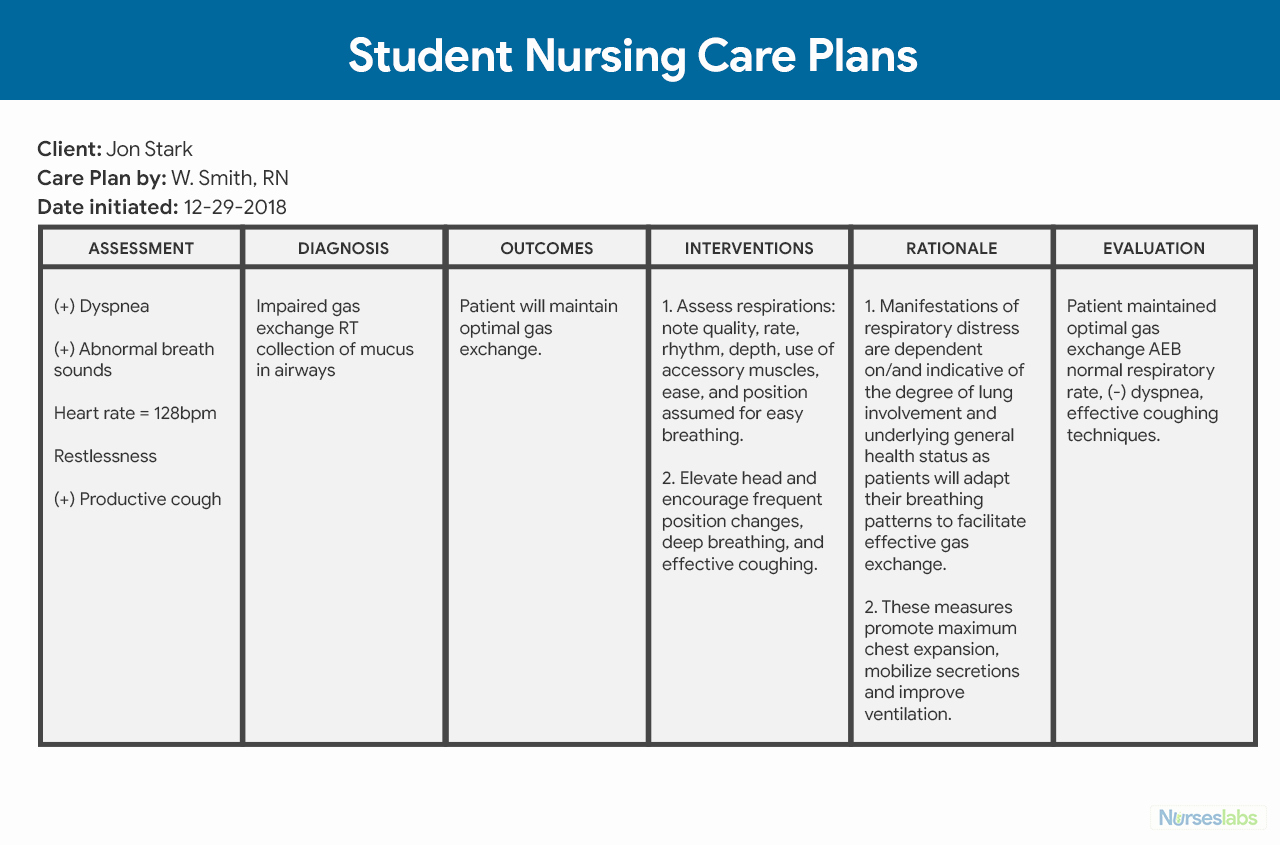 Nursing Care Plan Template Awesome Nursing Care Plan Ncp Ultimate Guide and Database