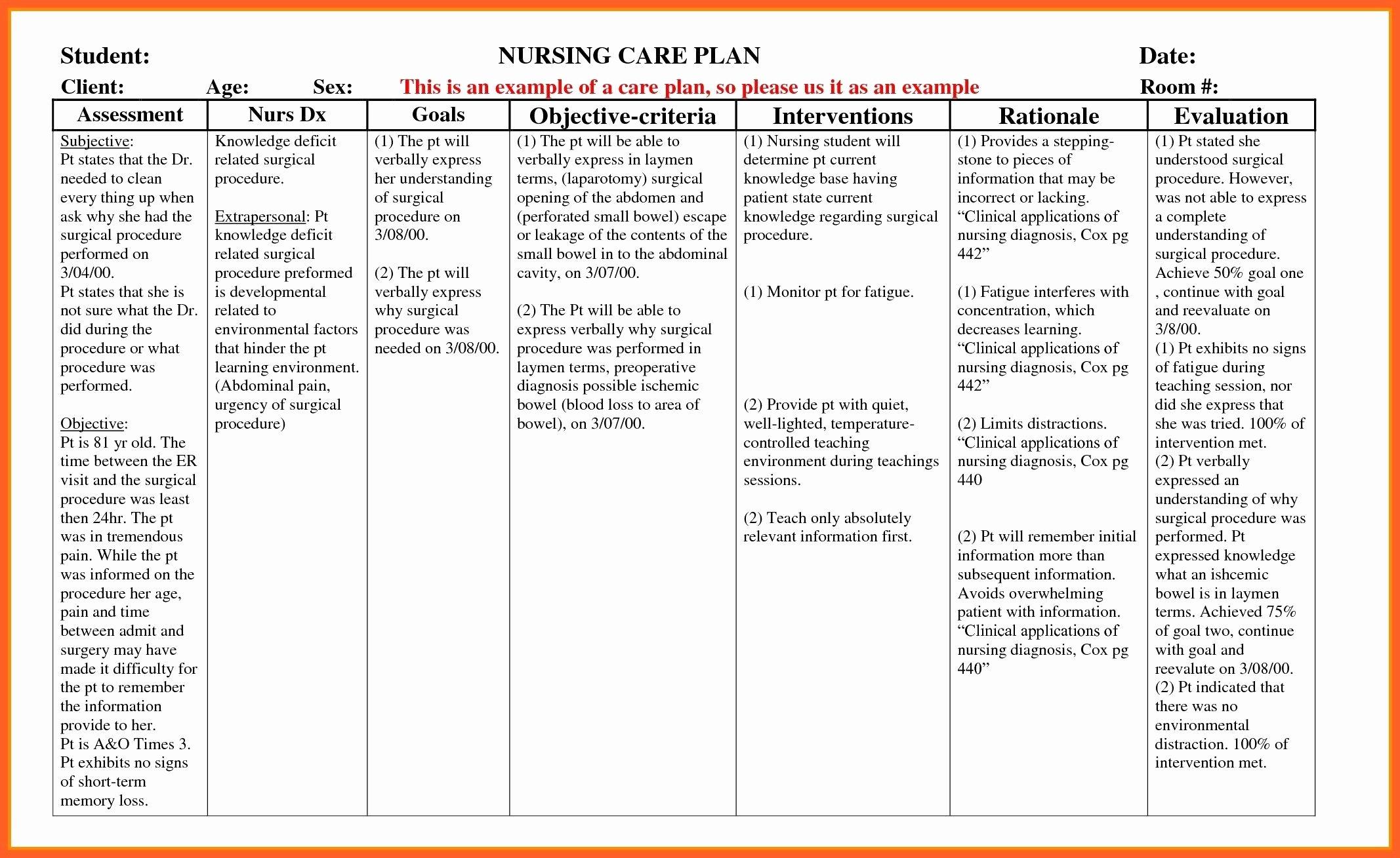 Nursing Care Plan Template Lovely Example Care Plan Template for Elderly Nursing Home