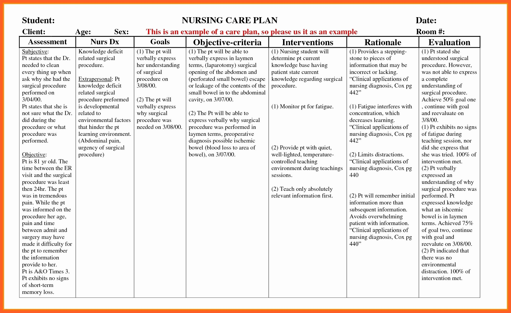 Nursing Care Plans Template Awesome Example Care Plan Template for Elderly Nursing Home