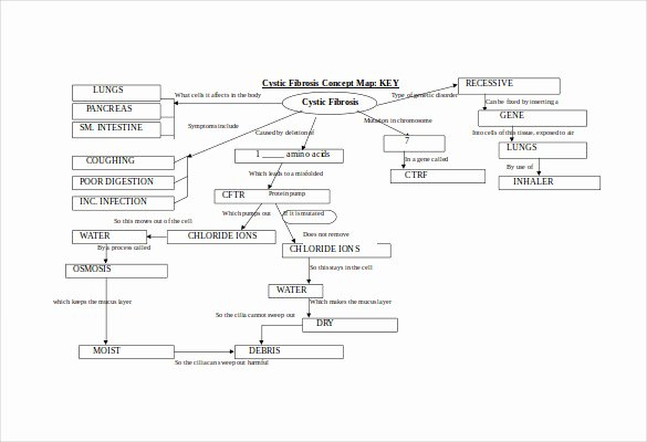 Nursing Concept Map Template Unique Nursing Concept Map Template
