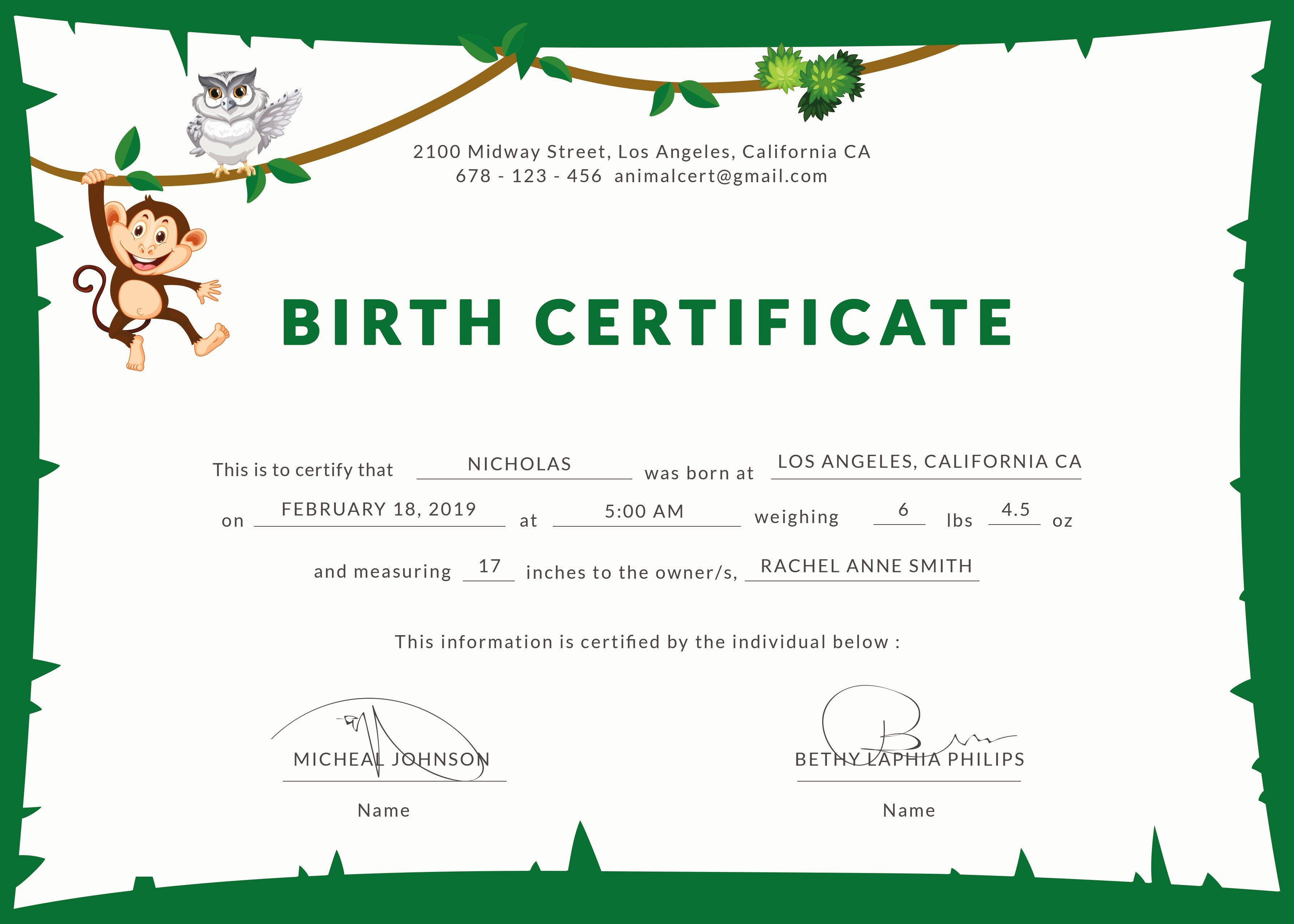 Official Birth Certificate Template Fresh Birth Certificate