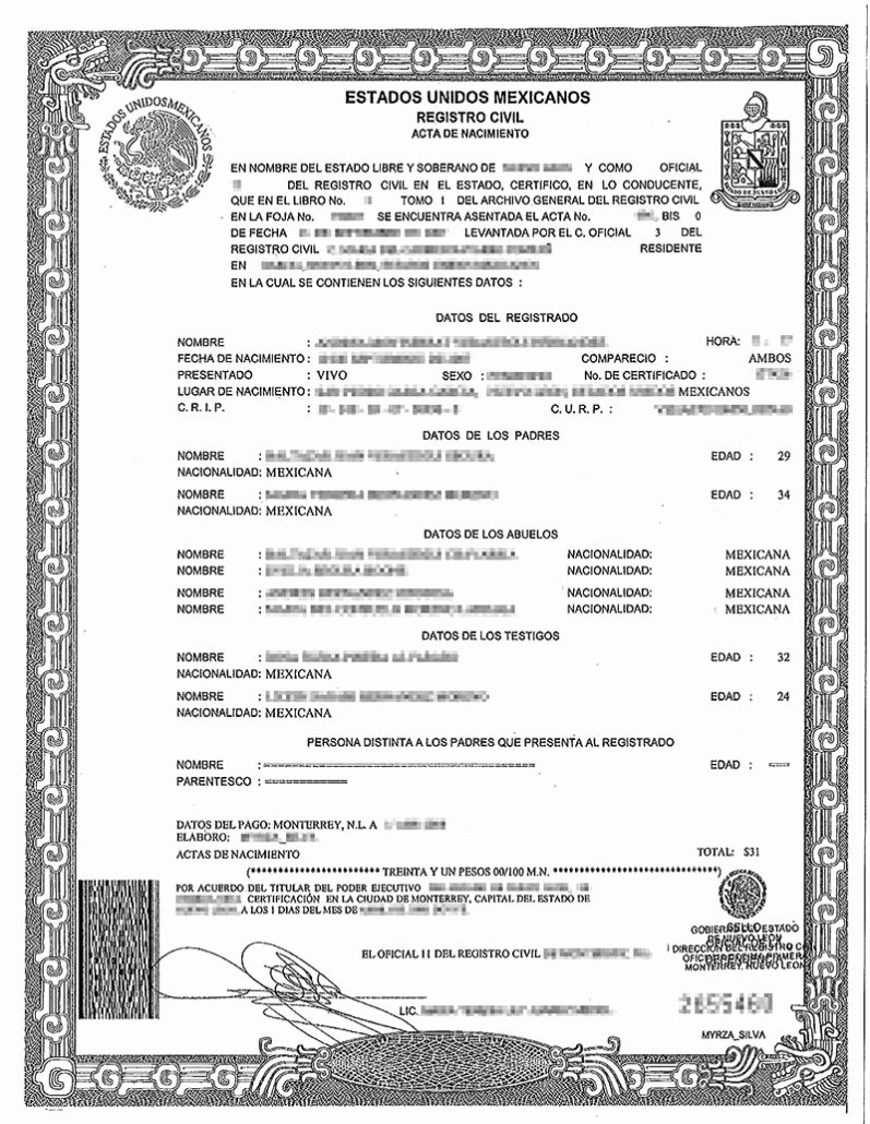 Official Birth Certificate Templates Beautiful Aatia – Don't Miss Our Official Documents Workshop