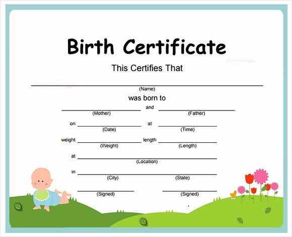 Official Birth Certificate Templates New Free 12 Birth Certificate Templates In Free Examples
