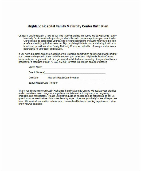 One Page Birth Plan Template Awesome Birth Plan Template 17 Free Word Pdf Documents