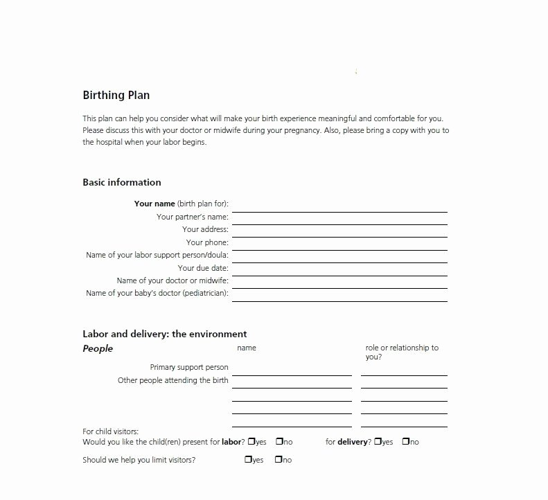 visual one page birth plan template printable