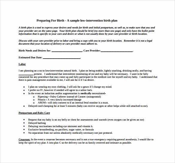 One Page Birth Plan Template Lovely Free 23 Sample Birth Plan Templates In Pdf Word
