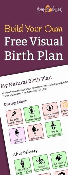 One Page Birth Plan Template Unique Free Visual Birth Plan Template that Nurses Won T Scoff