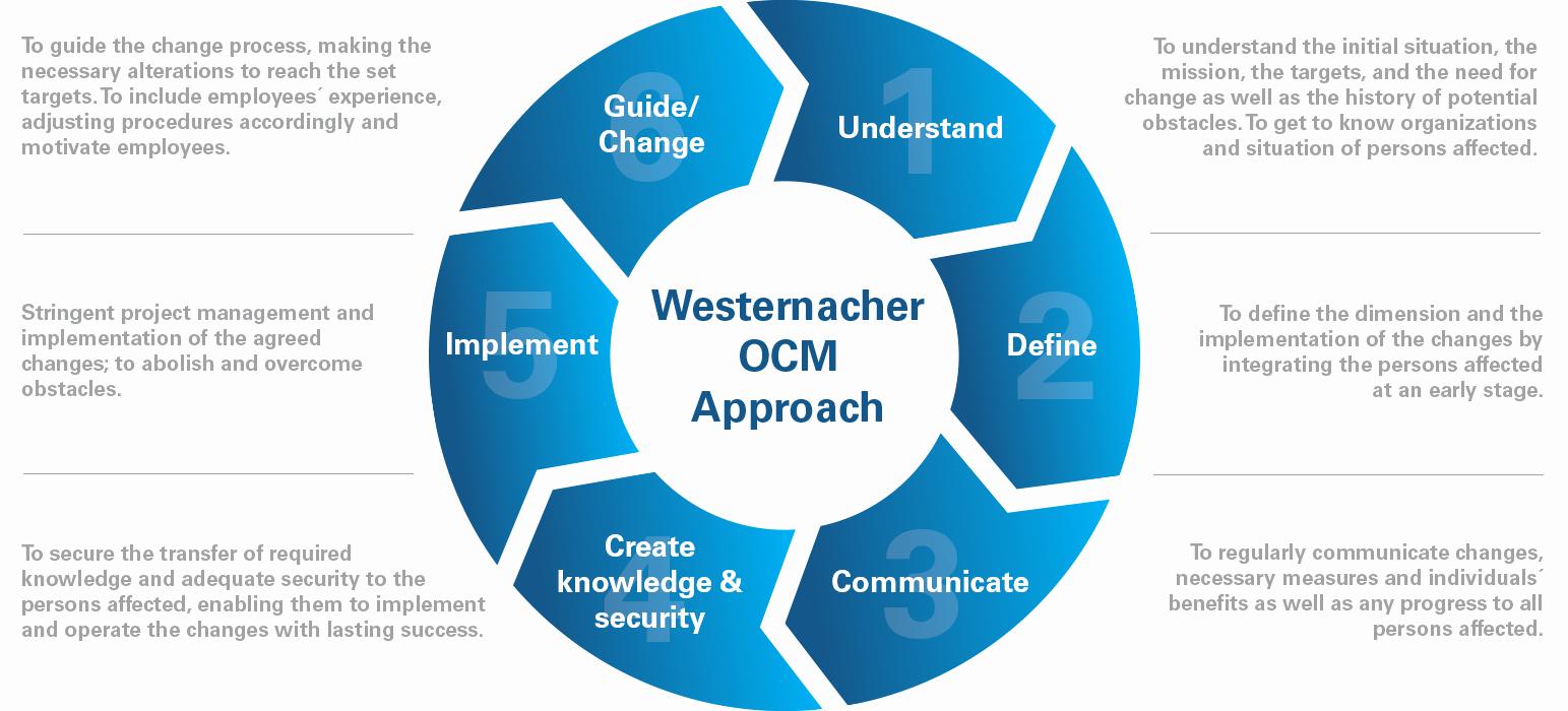 Organizational Change Management Plan Template Luxury organizational Change Management