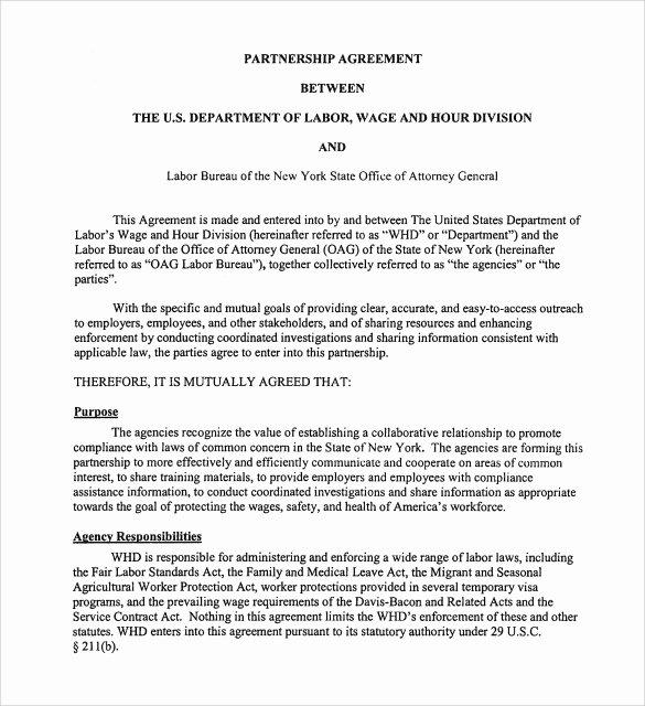 Partnership Agreement Template Word Elegant Sample Partnership Agreement 24 Free Documents Download