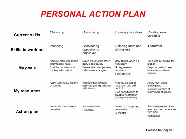 Personal Action Plan Template Inspirational Pap Template and Samples
