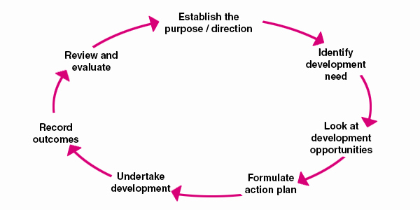 Personal Action Plan Template Luxury Personal Development Plan Example Template