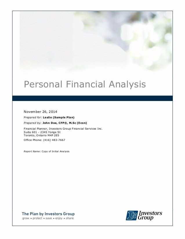 Personal Financial Plan Template Luxury Financial Plan Sample