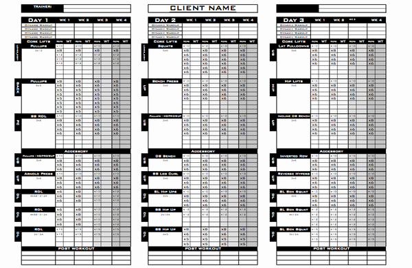 Personal Fitness Plan Template Luxury How & why Excel Training Designs