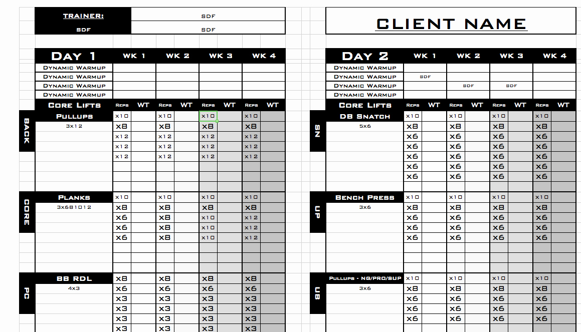 Personal Fitness Plan Template New Personal Training Personal Training Log