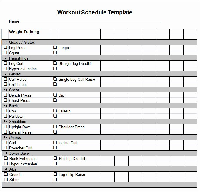 Personal Fitness Plan Template New Workout Template Excel