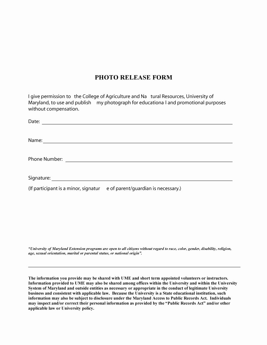 Photo Release form Template Free Fresh 53 Free Release form Templates [word Pdf