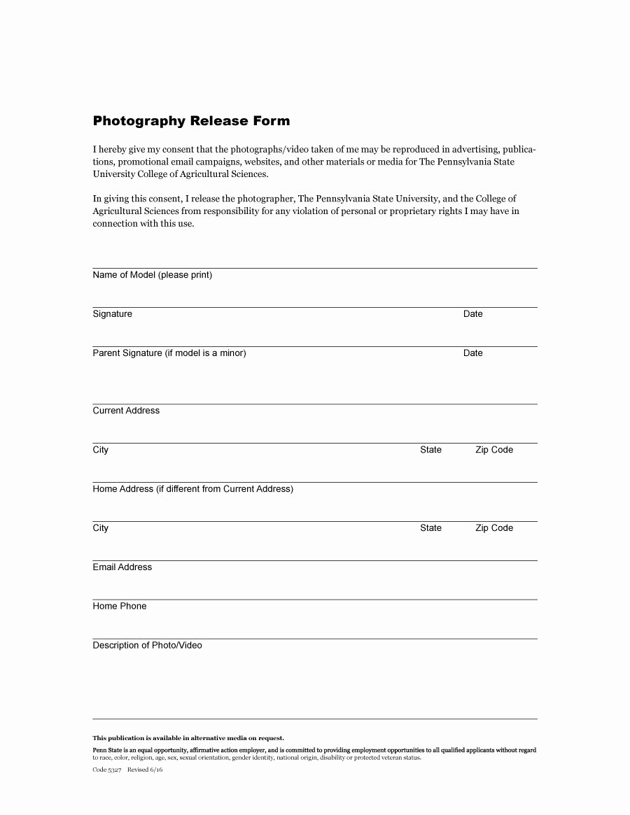 Photo Release form Template Fresh 53 Free Release form Templates [word Pdf]