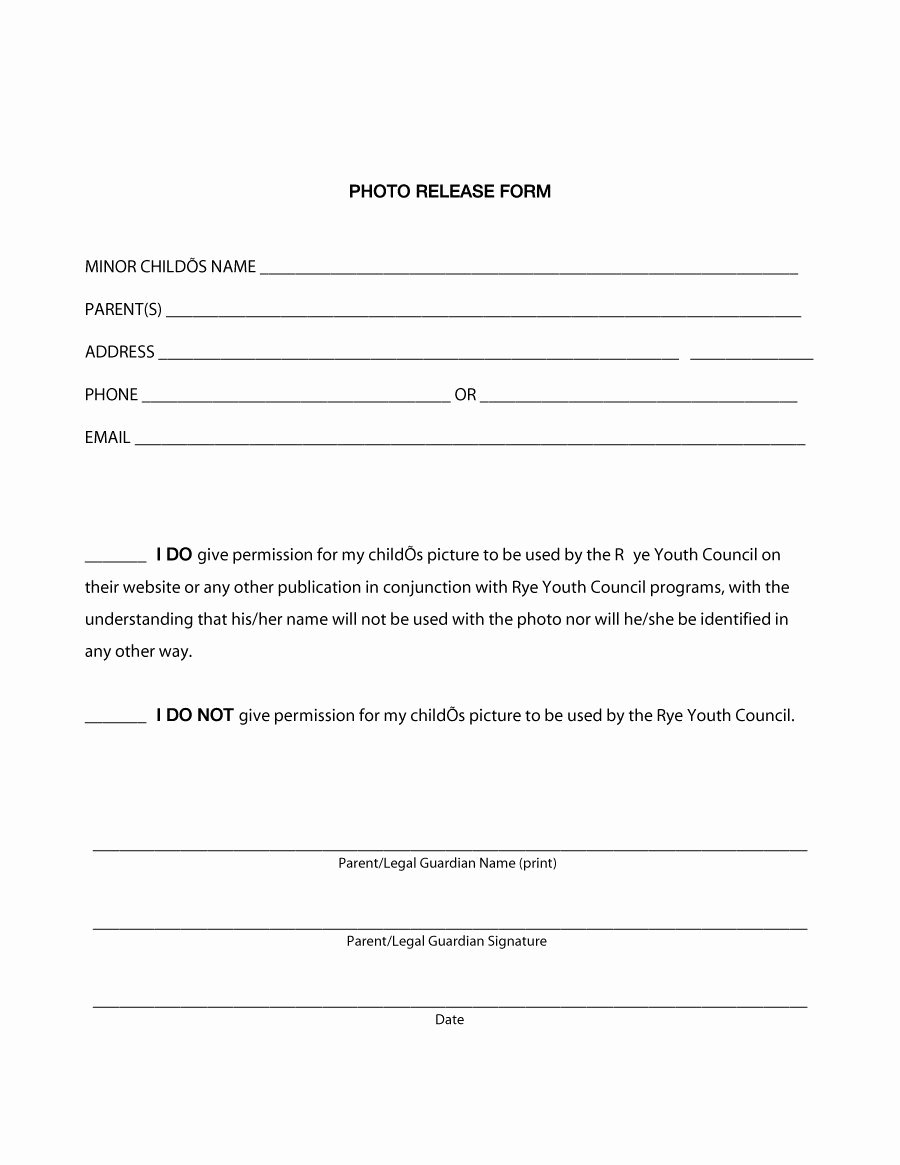 Photography Release form Template Elegant 53 Free Release form Templates [word Pdf]
